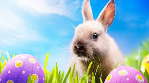 bunny easter an egg citing breakfast at the shops at nanuetrockland 411
