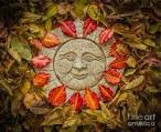 Image result for Autumn Equinox