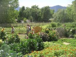 27 best garden ideas images on pinterest garden design ideas