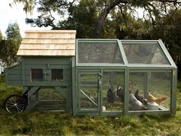 williams sonoma chicken coops in dig it design hgtv
