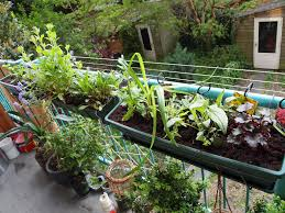 balcony gardening tips home outdoor decoration