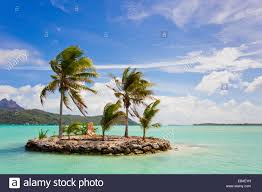 a small island with palm trees the shore near the airport on