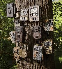 trail camera test 12 of the best models on the market outdoor life