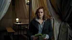 harry potter halloween background harry potter and the deathly hallows part 1 hermione granger