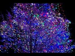 rotary lights la crosse making spirits bright la crosse rotary lights segment 3 youtube