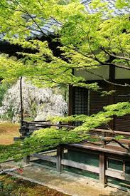 830 best zen garden images on pinterest japanese gardens zen