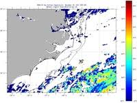 Cape Cod Water Temp - sea surface temperature imcs coastal ocean observation lab