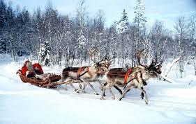 santa sleigh and reindeer santa sleigh and reindeer s sleigh reindeer model santa sleigh