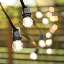 Bird String Lights by Replacement Fuse For Standard Grade Globe String Lights 7 Amp