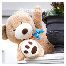 big teddy teddy bears home delivery all europe teddyway