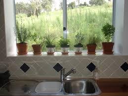 indoor window herb garden gardening ideas
