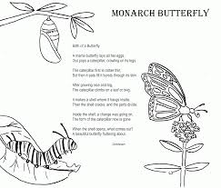 12 pics of monarch butterfly life cycle coloring page butterfly