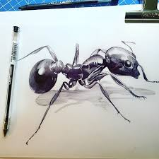 121 best illustrations images on pinterest sketching pens and