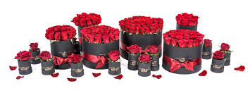 λουλούδια σε κουτί flower box u0026 gift shop in greece the rose