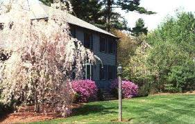 Grass Roots Landscaping by Massachusetts Landscaping Lawn Care Irrigation Nelson Grass