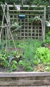20 ideas for your home veggie garden raised bed paths and raising