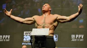 ufc s white thinks brock lesnar will to ufc in 2018