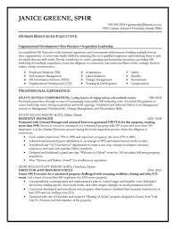senior executive resume marvelous sle senior executive resume account template projectr