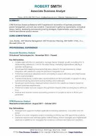 systems analyst resume doc business analyst resume format best resume sample template and