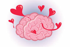 light up your brain brain facts that will blow your mind reader s digest