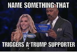 Kimberly Meme - name something that kimberly triggers a trump supporter meme on