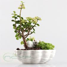 100 white ceramic flower pots small ceramic flower pots