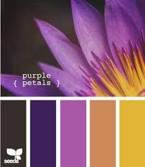 51 best colors images on pinterest colors color schemes and