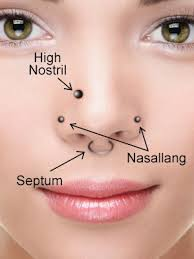 hindu nose ring four variations of piercing for nose pins