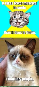 Frowning Meme - frowning cat meme 28 images frown cat newest images page 5