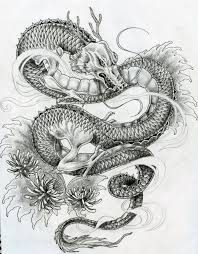 tattoo dragon water dragon tattoo imagesrobinson career blog clip art library