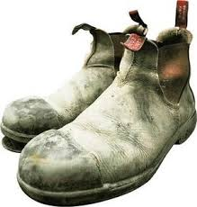 s blundstone boots australia well worn blundstones a that smiles