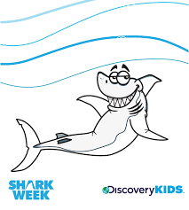 sitting shark coloring discovery kids