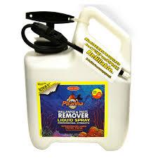shop piranha liquid wallpaper remover in pump up sprayer 1 3