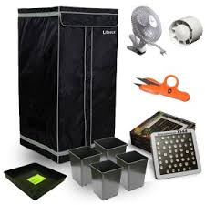 kit chambre de culture cannabis kit leds 144w luxe citybox 60 60x60x180 cityplantes