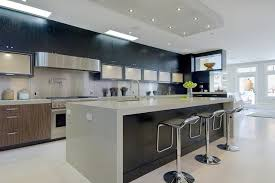Black Stained Cabinets Houzz - Black stained kitchen cabinets