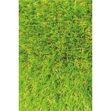 Grass Area Rug Why Do You Need A Grass Rug Darbylanefurniture