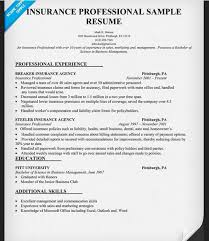 Insurance Sales Resume Sample Insurance Agent Resume Sample Free Resume Templates