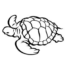 animaux marins 29 animaux u2013 coloriages à imprimer