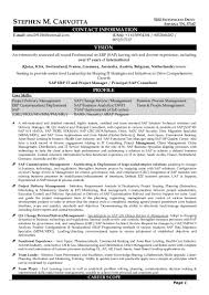 Sample Resume For Sap Mm Consultant Resume Cv