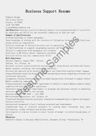 Business Analyst Profile Resume Business Analyst Capital Markets Resume Free Resume Example And