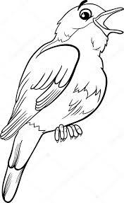 nightingale bird coloring u2014 stock vector izakowski 51131503