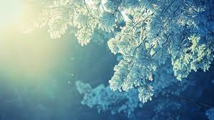 anime nature snow winter cold sunlight peaceful wallpapers