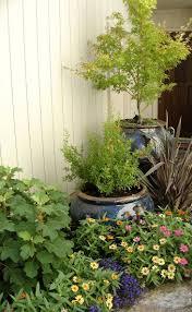 Urban Garden Woodland Hills - simple elegancehome woodland hills ca simple elegance landscape design
