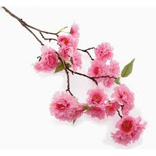 small cherry blossom spray pink 75cm corsage creations