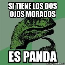 meme filosoraptor si tiene los dos ojos morados es panda 6080683