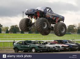 videos of monster trucks crushing cars monster truck jumping over crushed cars in a race stock photo