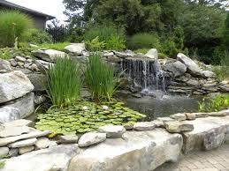 backyard koi pond ideas u2014 decor trends small koi pond ideas