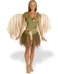 Halloween Fairy Costume 6 Cheap Womens Fairy Costumes Ideas Fairy Pixie Nymph