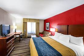 Comfort Inn Atlanta Georgia Comfort Inn In Atlanta Hotel Rates U0026 Reviews On Orbitz