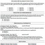 Business Resume Template Free Business Resume Template Free Gfyork Com